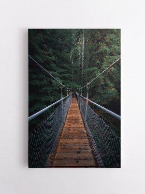drobė džiunglių tiltas