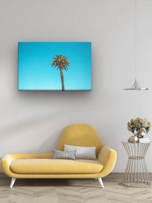 drobė palmė