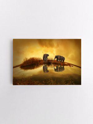 drobė trys drambliai