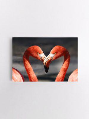 drobė du flamingai