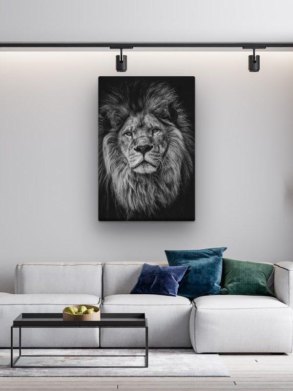 drobė pilkas liūtas