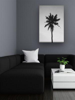 drobė bespalvė palmė